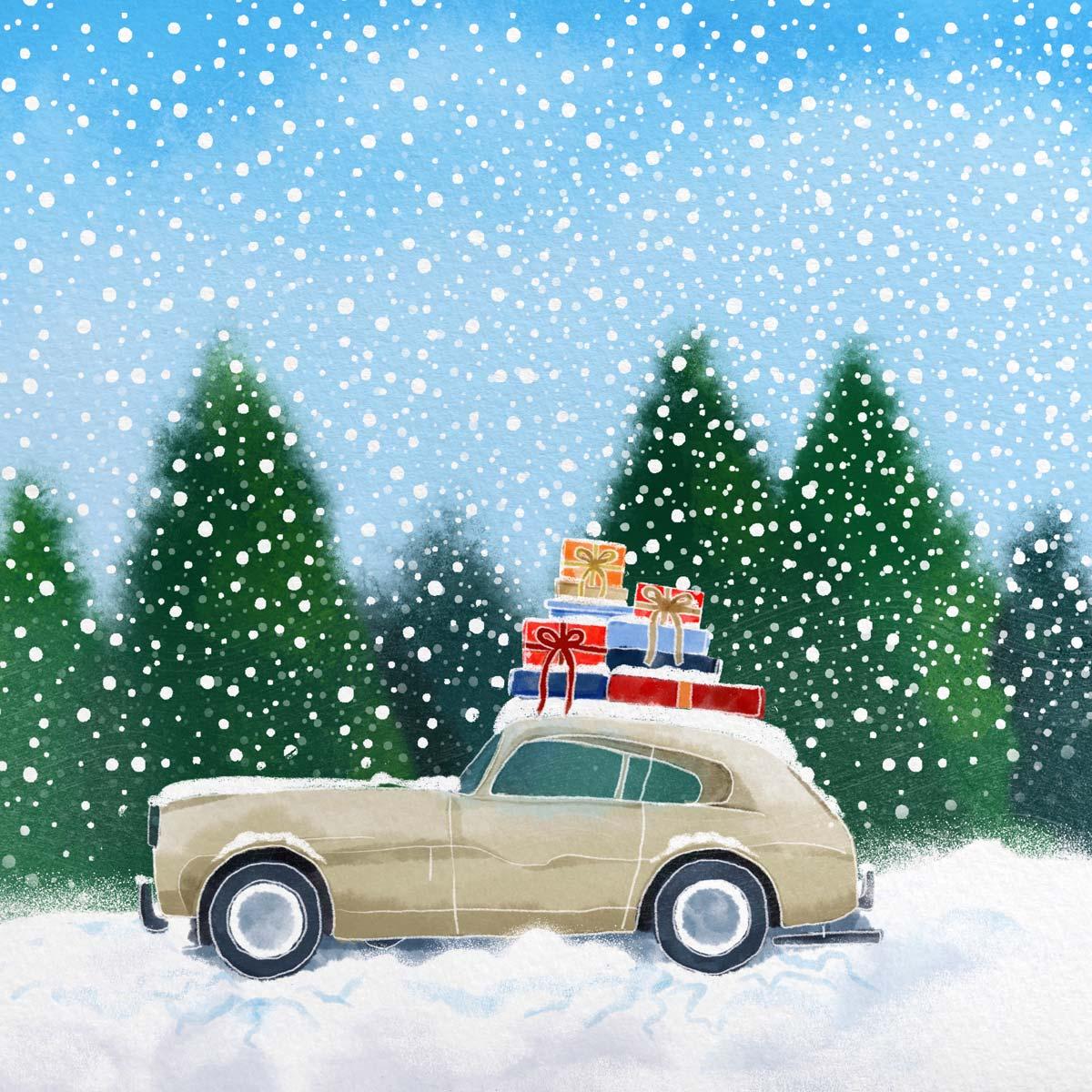 Snowy-Car2